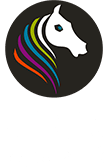 לוגו אליניר דיגיטל
